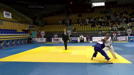 Picture for category Judo tatami