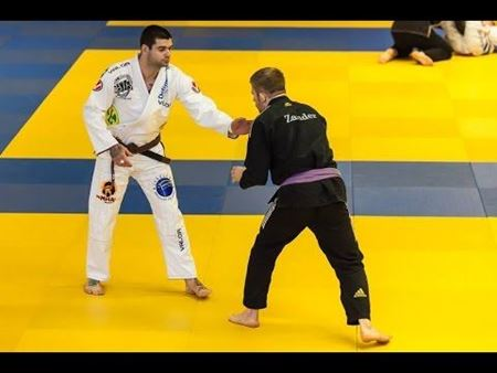 Picture for category BJJ tatami
