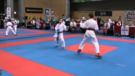 Picture for category Karate tatami