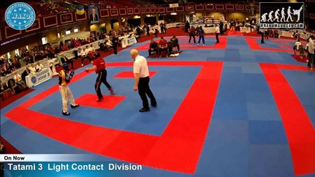 Picture for category Taekwondo tatami