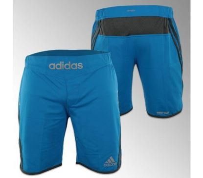 Picture of adidas Transition Shorts (ADIMMAS06)