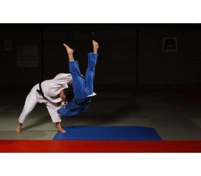 Picture of FUJI Nage Komi Crash Mat (7003)