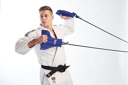 Picture of IPPON GEAR Uchi Komi trening oprema (JITA04)